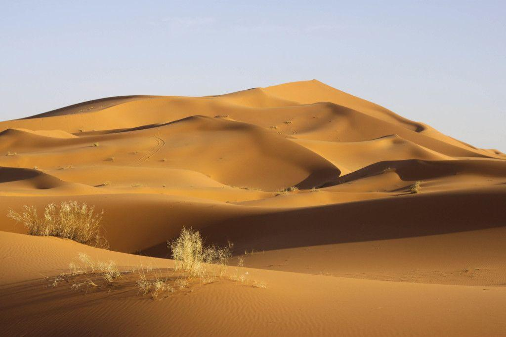 Deserto do Saara. Foto: Getty Images