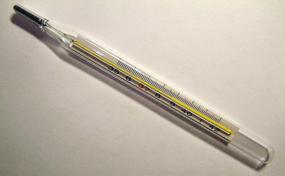 Termômetro médico mostrando a temperatura de 38,7 °C. Imagem: Wikimedia Commons.