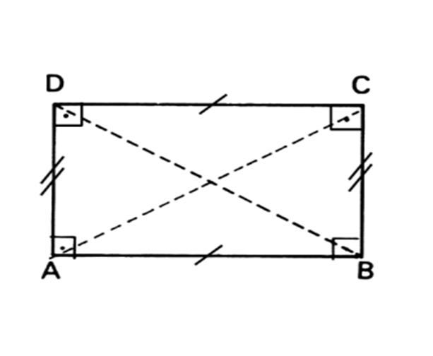 Retângulo. Imagem: Wikimedia commons.
