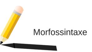 morfossintaxe exemplos