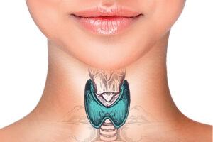 glândula tireoide