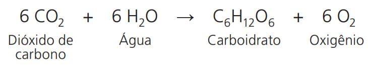 fotossintese formula