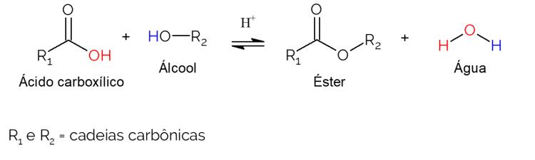 reação de esterificação de fischer